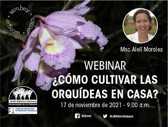 """Events in Cuba - """"El Cooperativismo Latinoamericano. Desafíos, Actitudes y Estrategias de Desarrollo"""" COOPERAT 2009"""