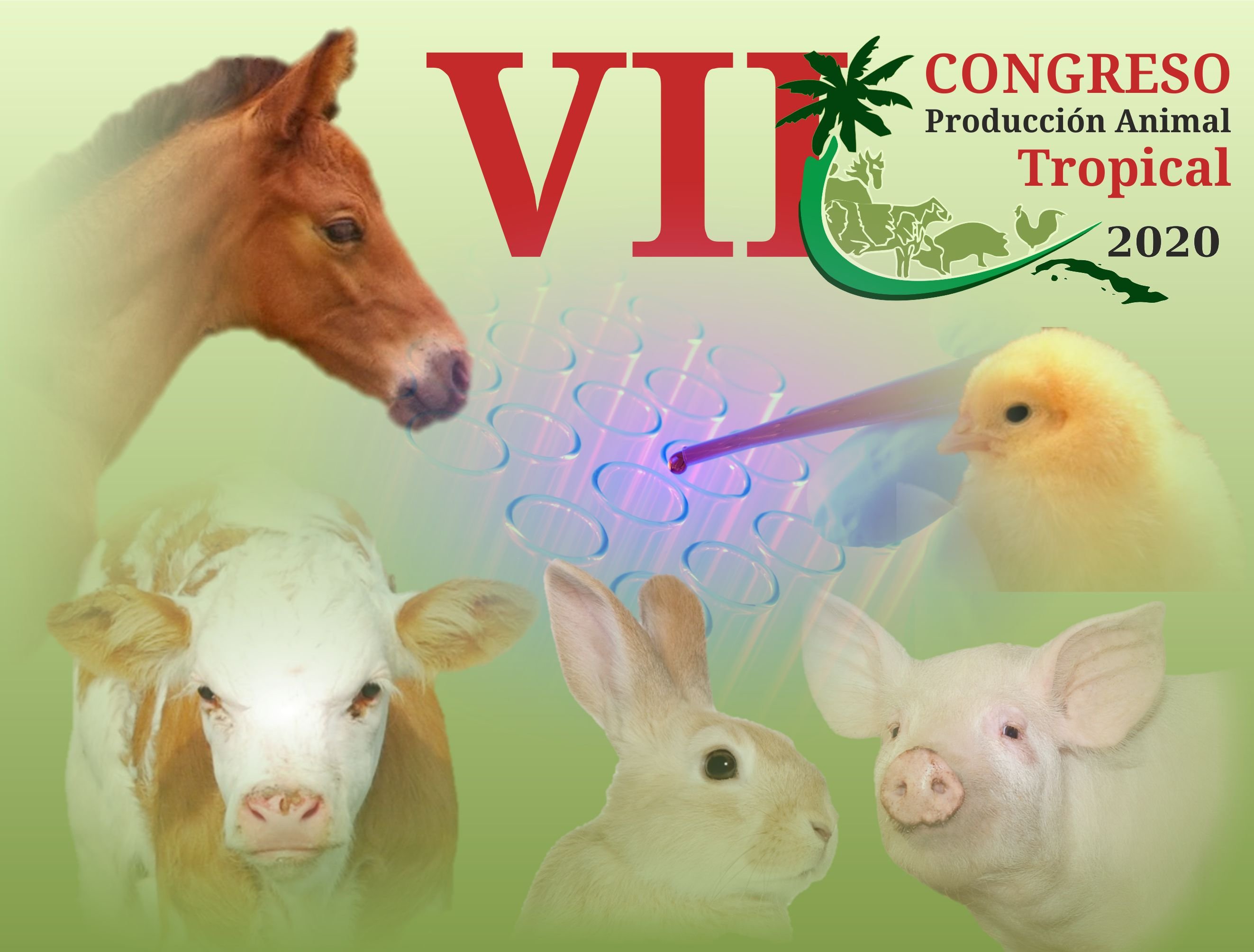 Eventos en Cuba - VII Congreso Internacional de Producción Animal Tropical 2020
